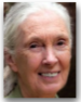 Jane Goodall 75.png