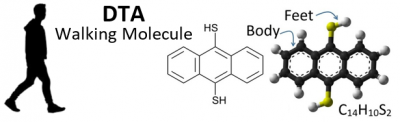 DTA (walking molecule).png